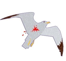 illustration of a wounded seagull in flight