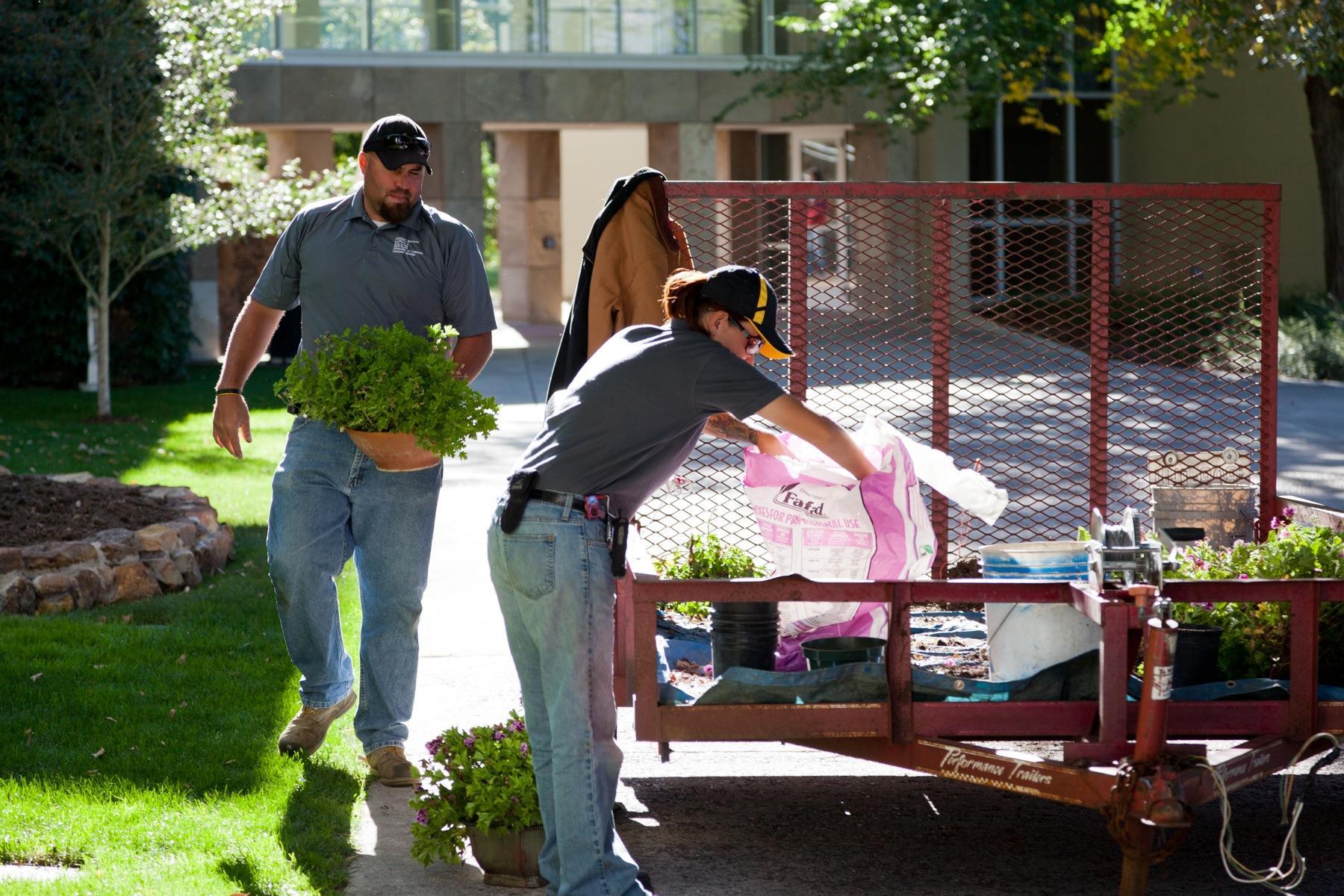 Facilities Services help pot geraniums