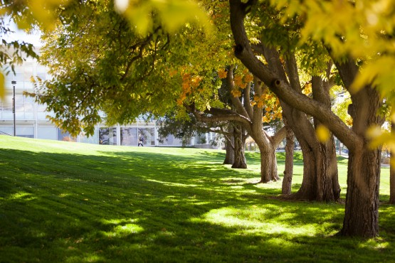 Photo feature: Fall at UCCS