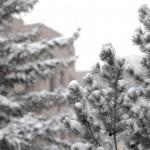 Spring semester starts snowy
