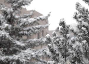 spring-semester-starts-snowy