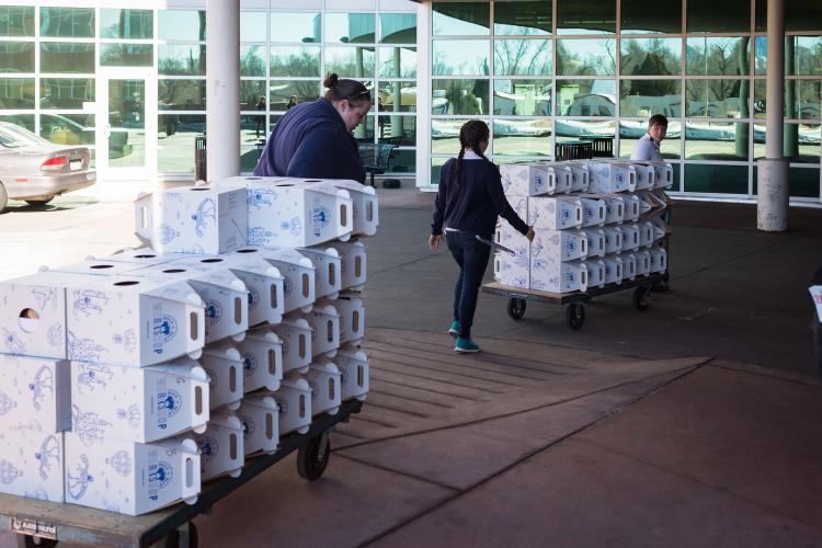 Members of the Beth-El Student Nurses Association wheel more than 80 teddy bears into Memorial Hospital