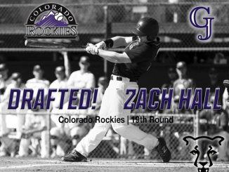 Zach Hall drafted by the Colorado Rockies