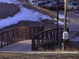 Student walking across a bridge on campus