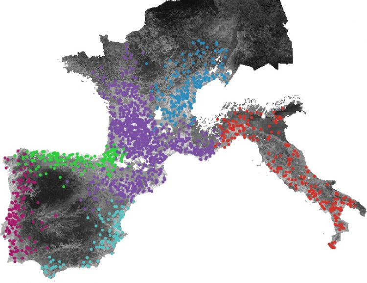 Image from the research on the different regions in Europe during the Last Glacial Maximum.
