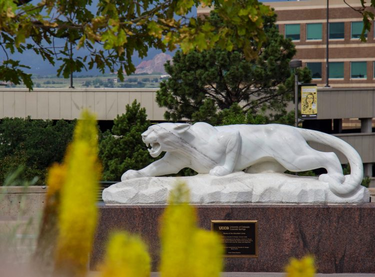 Mountain Lion Statue on campus