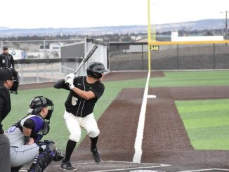 Luis Samorano waits for the pitch in the batters box at Mountain Lion Park.