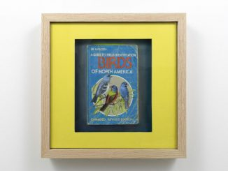 A photo of a framed piece of artwork