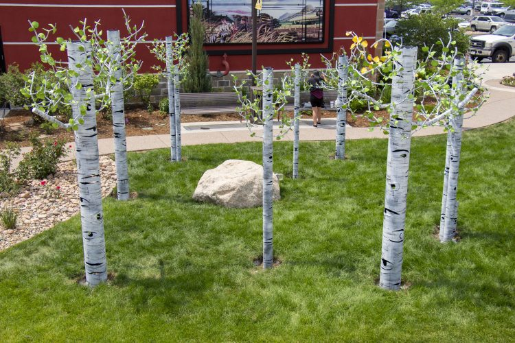 Aspen tree like sculptures