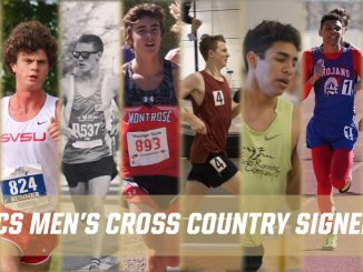 Action photos of eight cross country runners