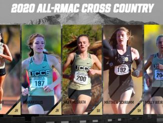 Five action photos of cross country runners