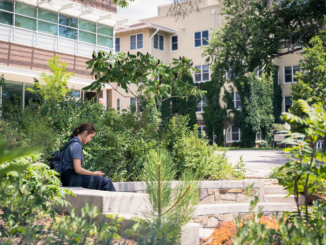 A student sits in the outdoor amphitheatre on the UCCS campus, surrounded by green foliage.